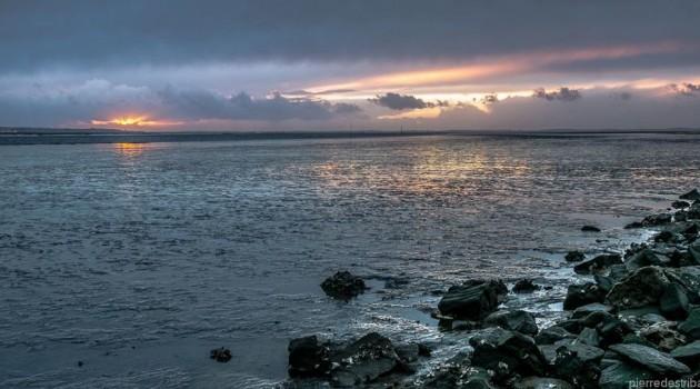 Le Teich vu par P. Destribats, photographe